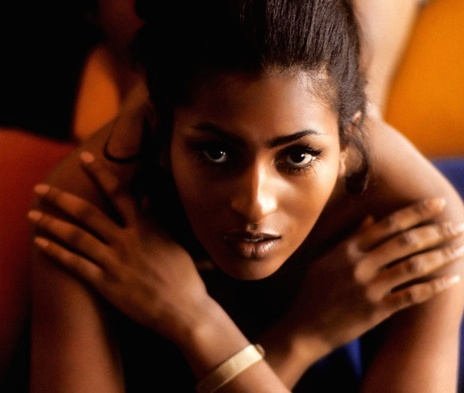 Sex Symbols of the 1970s: PamGrier